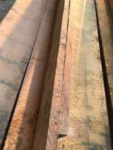 Sawn And Structural Timber South America - Cumaru  Loose Colombia