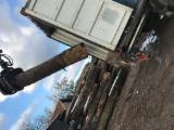 Serbia Hardwood Logs - Oak logs a/b/c 30-39;40+ x 220+ cm