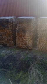 摩尔多瓦 - Fordaq 在线 市場 - 桶木板, 橡木