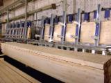 Drewno Iglaste  Drewno Klejone Warstwowo – Elementy Drewniane Łączone Na Mikrowczepy Na Sprzedaż - Belki Duo, Sosna Syberyjska
