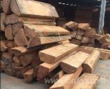 Forest And Logs Vietnam - Pau Rosa Round Logs 40+ cm