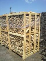 Find best timber supplies on Fordaq - KD Oak/ Hornbeam Firewood