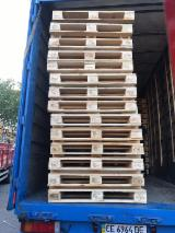 Wooden Pallets For Sale - Buy Pallets Worldwide On Fordaq - New IPPC KD Pine Euro Pallets