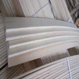 Holz Komponenten - Asiatisches Laubholz, Massivholz, Pappel
