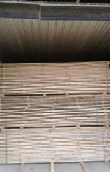 Woodworking - Treatment Services - Drying Services for Sawn Timber