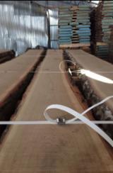 Netherlands - Fordaq Online market - ABC Fresh Sawn Loose Oak