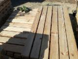 Serbia - Fordaq Online mercado - Madera para pallets Pino Silvestre  - Madera Roja Corte Fresco En Venta