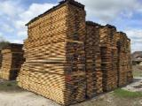 Germany Timber Services - Sawing, Steaming and Drying Services from Germany