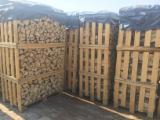 Firewood, Pellets And Residues For Sale - FSC Hornbeam / Oak Cleaved Firewood, 25; 33 cm