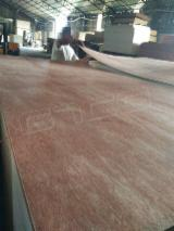 Bintangor Marine Plywood With Poplar Core