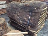 希腊 - Fordaq 在线 市場 - 整边材, 栗木