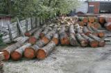 硬木木材 - 注册查看最好的木制品 - 毛边材-圆木剁, 樱桃