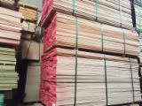 Portugal - Fordaq Online market - KD Steamed Beech Sawn Timber