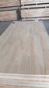 1 Schicht Massivholzplatten, Radiata Pine