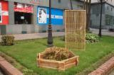 Produits De Jarden Vietnam - Vend Bordure De Jardin Feuillus Asiatiques