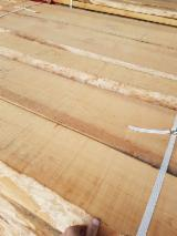 Unedged Hardwood Timber - Unedged Steamed Beech Timber