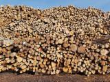 Wälder Und Rundholz - Stämme Für Die Industrie, Faserholz, Schwarzerle, Buche, Birke