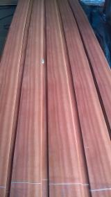 Find best timber supplies on Fordaq - Vicover - Makore Veneer, 0.7 mm
