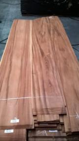 Sliced Veneer - Dibetou Natural Veneer, 0.7 mm