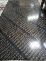 胶合板  - Fordaq 在线 市場 - 覆膜胶合板(黑膜)