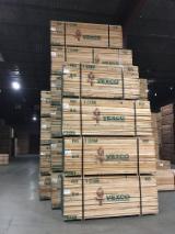 锯材及结构木材 北美洲 - 木板, 红橡木