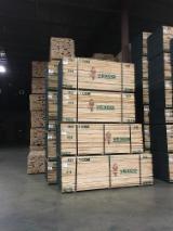 锯材及工程用材 - 整边材, 红橡木