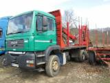 Camion Transport Busteni - Camion forestier