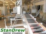 Vender Máquinas De Moldagem Para Usinagem De Três E Quatro Lados RAIMANN Profirip Usada 2009 Polônia