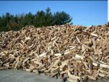 Bulgaria - Fordaq Online market - Proffesional company selling wood in pallets - oak,beech, pinewood, offer also DAP