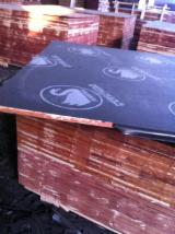 Plywood For Sale - Film Faced Plywood (Black or Brown Film) /Shuttering plywood