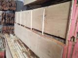 Hardwood  Unedged Timber - Flitches - Boules - Offer for Loose, Oak, 2.1 m