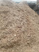 Firewood, Pellets And Residues - Fresh Beech Wood Chips From Used Wood