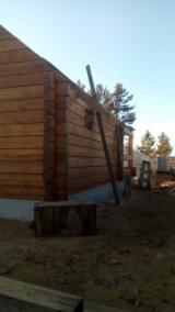 Drvena Kuća - Polugotove Drvene Grede Za Prodaju - Brvnara (Kuća Od Naslaganih Stabala), Sibirski Ariš