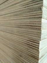 LVL - Laminated Veneer Lumber  - Fordaq Online market - FSC Fireproof Poplar LVL, 60 x 100 mm