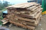 Standing Timber Demands - Ecuador