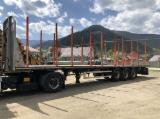 Semiremorca - Semiremorca transport lemn,buștean Trailis 2015