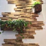 Massivholzplatten China - 1 Schicht Massivholzplatten, Armands Kiefer