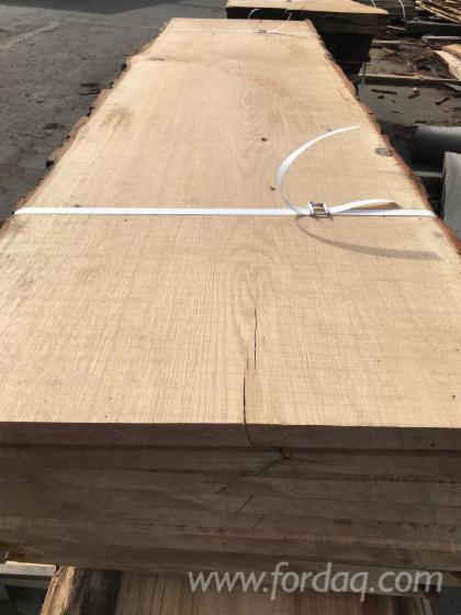 Boules--Beech--Oak