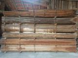 Nadelholz  Blockware, Unbesäumtes Holz Zu Verkaufen - Lärche aus Süddeutschland