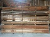 Softwood  Unedged Timber - Flitches - Boules - Larch  Boules 32;  42;  52 mm from Germany, Franken