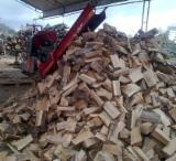 劈切薪材 – 未劈切 碳材/开裂原木 常见黑色阿尔德木, 鹅耳枥, 橡木