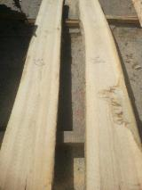 ABC KD Unedged Ash Timber, 65 mm