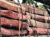 null - African Hardwood logs