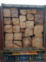 Padouk Hardwood Logs - Buying Square Logs of Kosso, Doussie, Tali, Musivi and more
