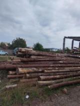 Construction Round Beams - Fir , Spruce  10-30 cm AB Construction Round Beams from Romania
