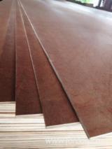 Bintangor / Eucalyptus Natural Plywood 7/8 mm