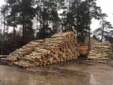 Tavolame Lettonia - Vendo Tavolame Betulla FSC 24 mm