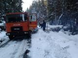 Camioane Transport Busteni Lungi - Camion forestier roman schimb
