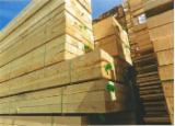 Softwood  Sawn Timber - Lumber For Sale - Best Price Pine Wood with High Quality at wholesale