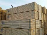 Nadelschnittholz, Besäumtes Holz Sibirische Kiefer - Sibirische Tanne, Sibirische Kiefer, Fichte  , Thermisch Behandelt - Thermoholz
